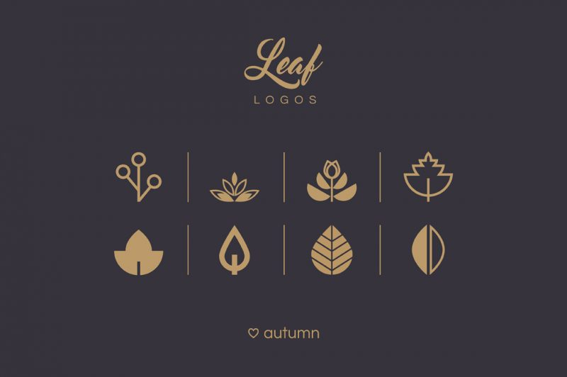Leaf logos and patterns