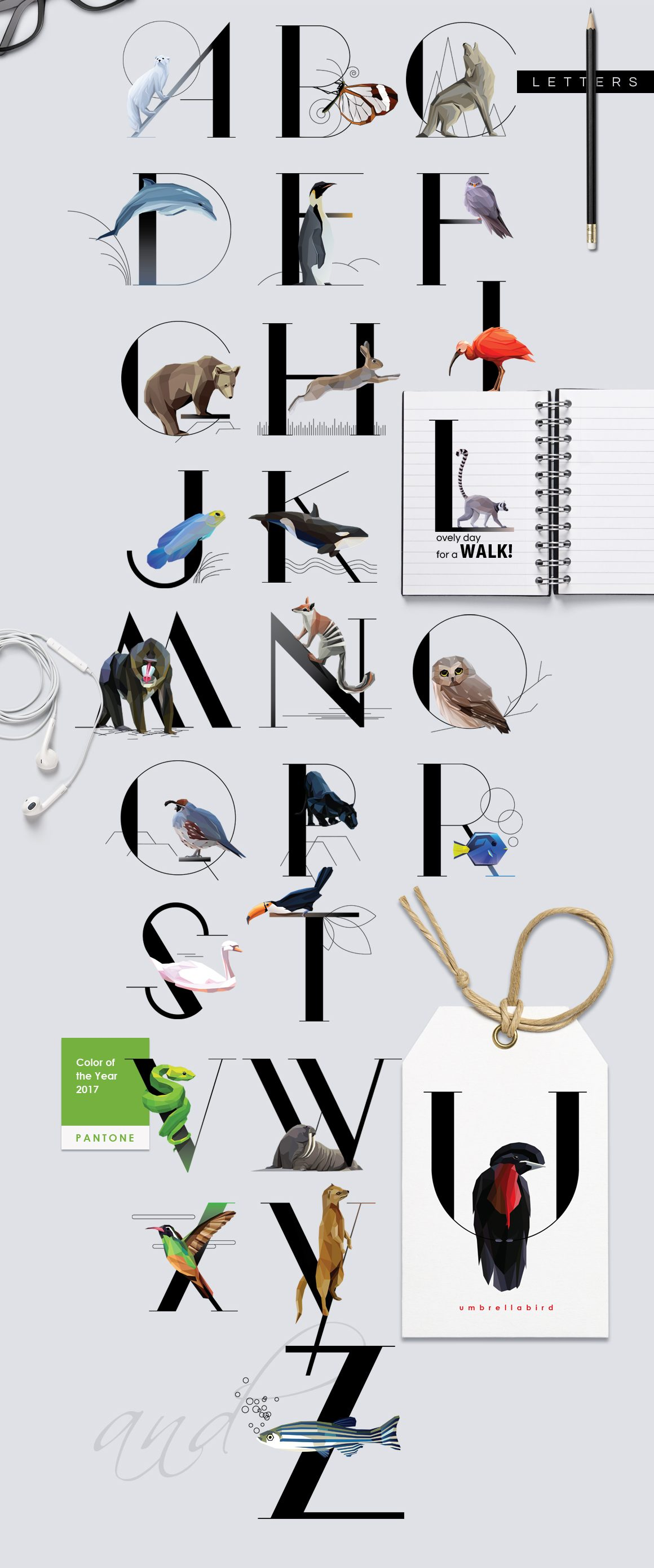 Animal Typography