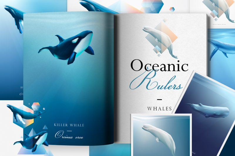 Oceanic Rulers Whales